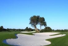 Quinta-de-Cima-Golf