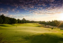 Steenberg-Golf