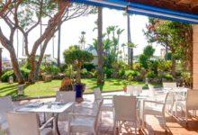 Hipotels-Barrosa-Park-Hotel-Restaurant-Terrasse