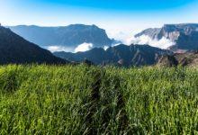 Oman-Landschaft