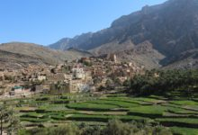 Oman-Landschaft-Plantagen